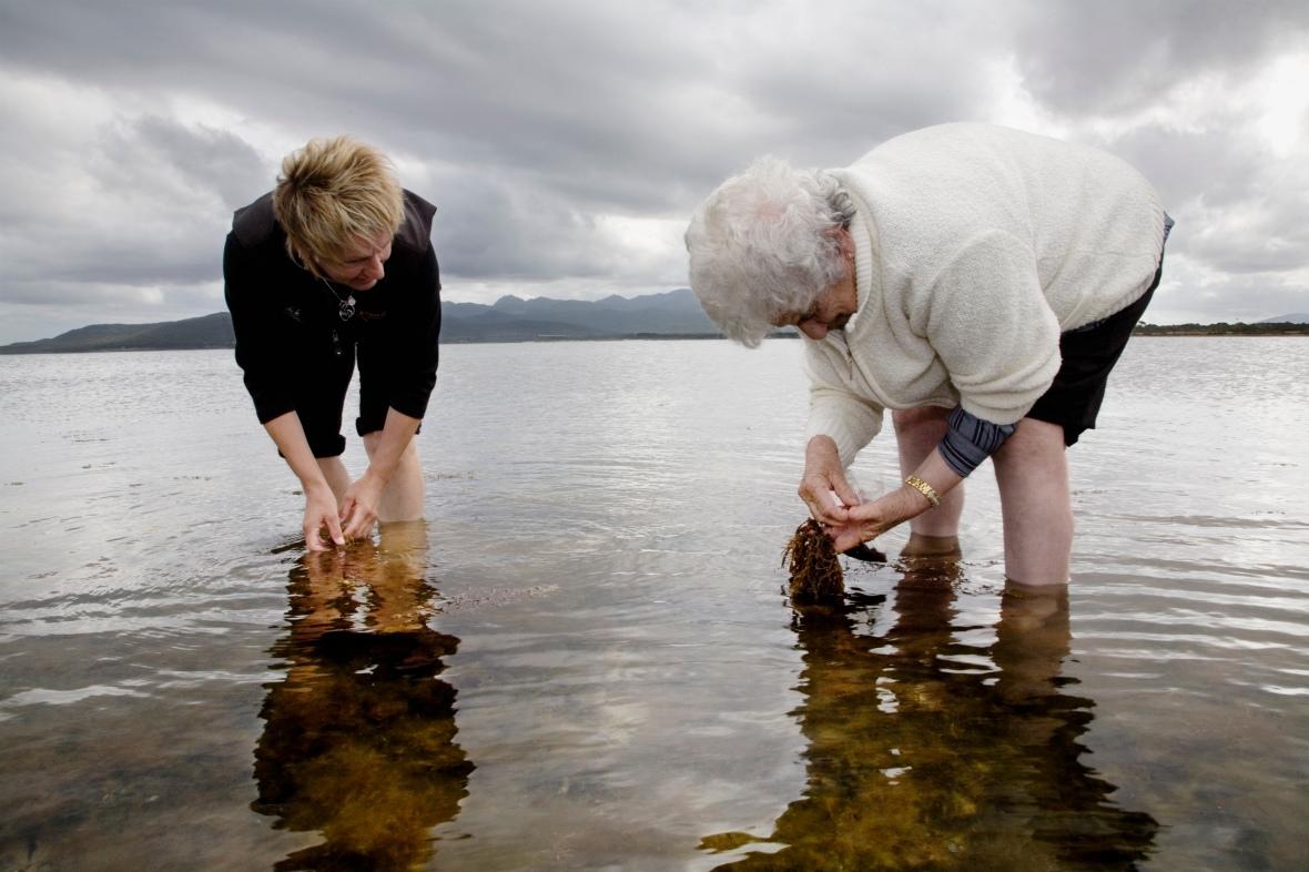 Luna Tunapri collecting shells Flinders Island